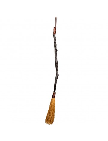Witch broom deluxe